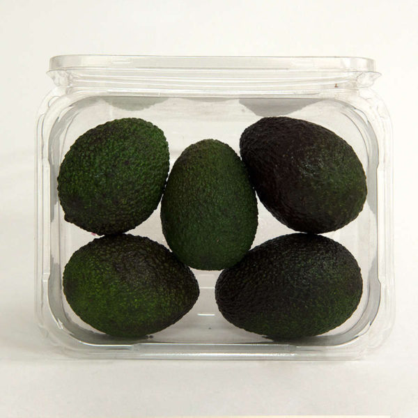avocado-hass-pack
